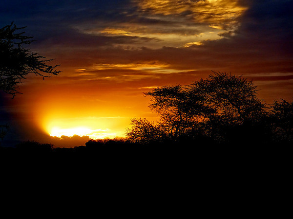 Sunrise, Serengeti. From 10 of the Best Experiences on a Safari in Africa